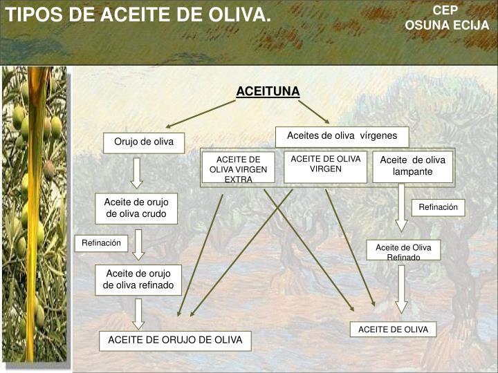 TIPOS DE ACEITE DE OLIVA.