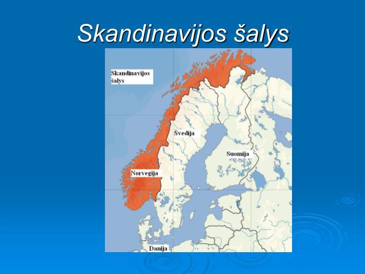 Skandinavijos alys