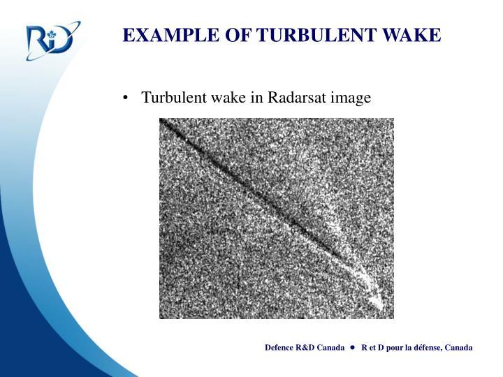 EXAMPLE OF TURBULENT WAKE