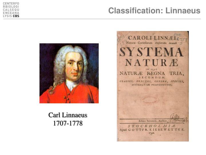 Classification: Linnaeus