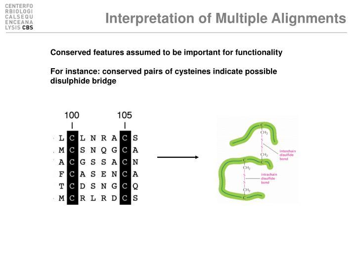Interpretation of Multiple Alignments