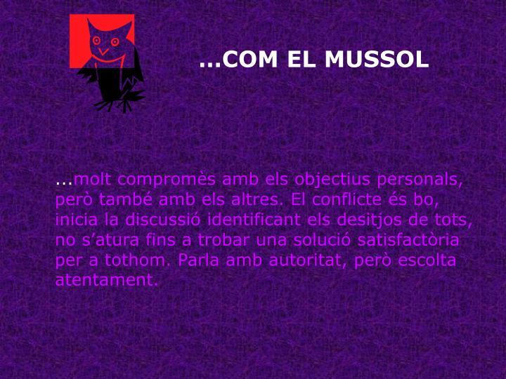 …COM EL MUSSOL