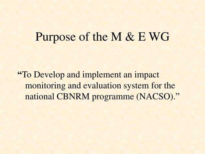 Purpose of the M & E WG