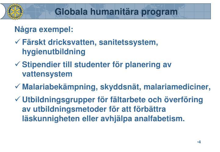 Globala humanitära program