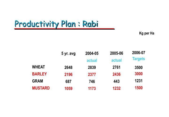 Productivity Plan : Rabi