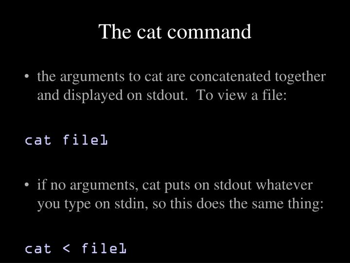 The cat command