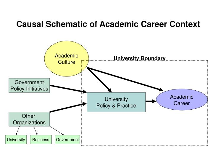 Causal Schematic of Academic Career Context