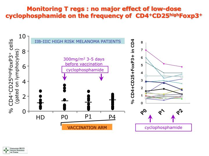 Monitoring T regs : no major effect of low-dose cyclophosphamide on the frequency of  CD4