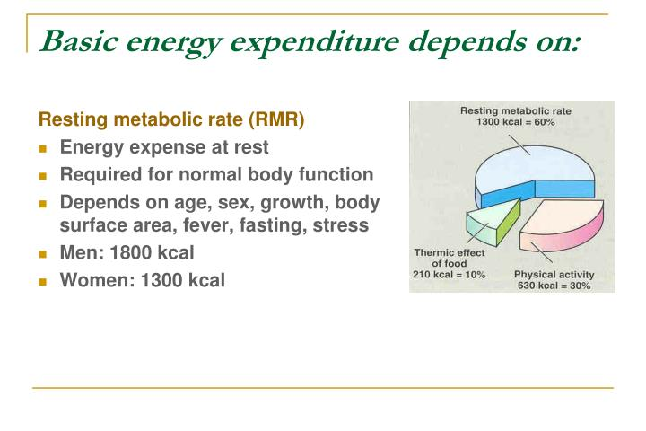 Basic energy expenditure depends on: