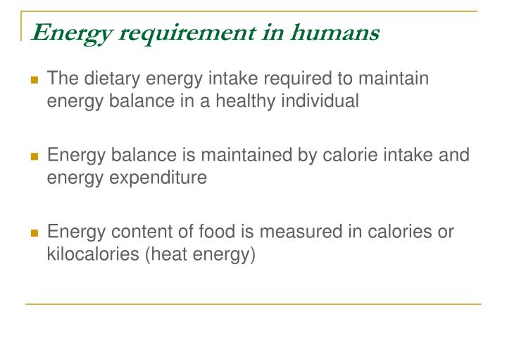 Energy requirement in humans