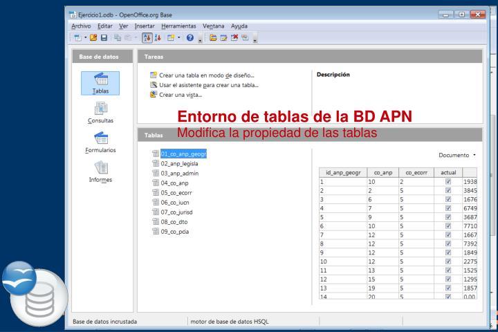 Entorno de tablas de la BD APN
