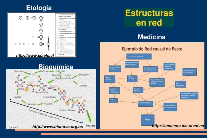 Etología