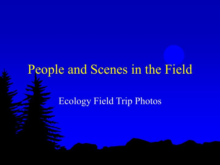 People and Scenes in the Field