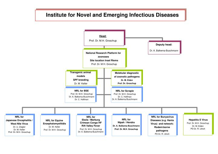 Institute for Novel and Emerging Infectious Diseases