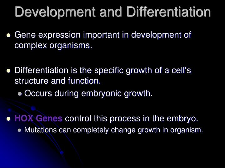 Development and Differentiation