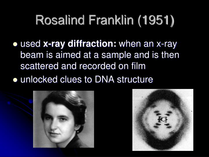 Rosalind Franklin (1951)