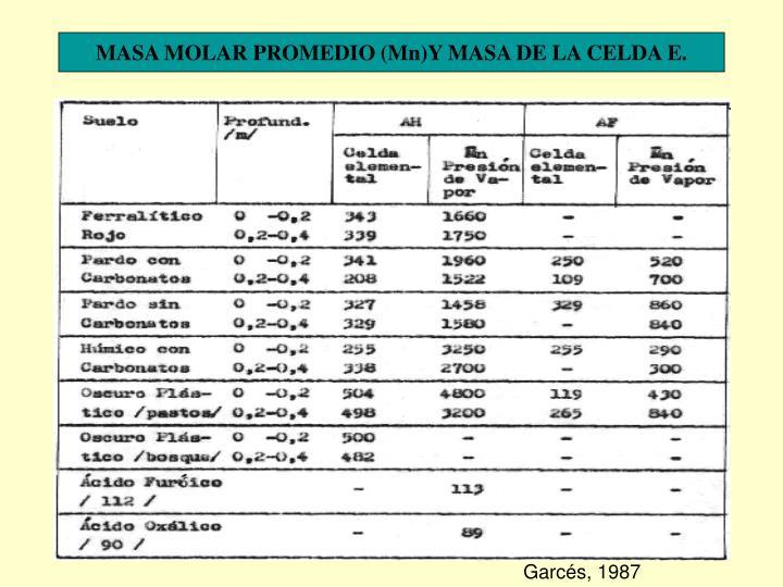 MASA MOLAR PROMEDIO (Mn)Y MASA DE LA CELDA E.