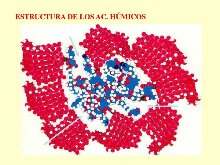 ESTRUCTURA DE LOS AC. HÚMICOS