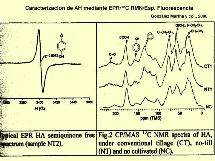 Caracterización de AH mediante EPR/
