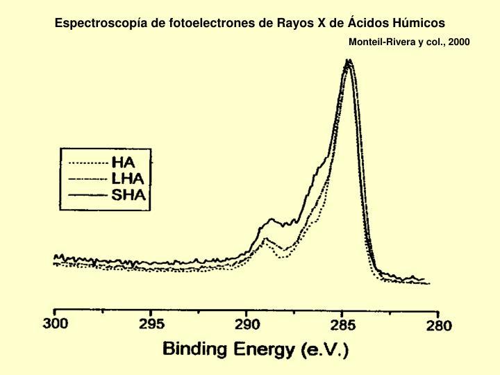 Espectroscopía de fotoelectrones de Rayos X de Ácidos Húmicos