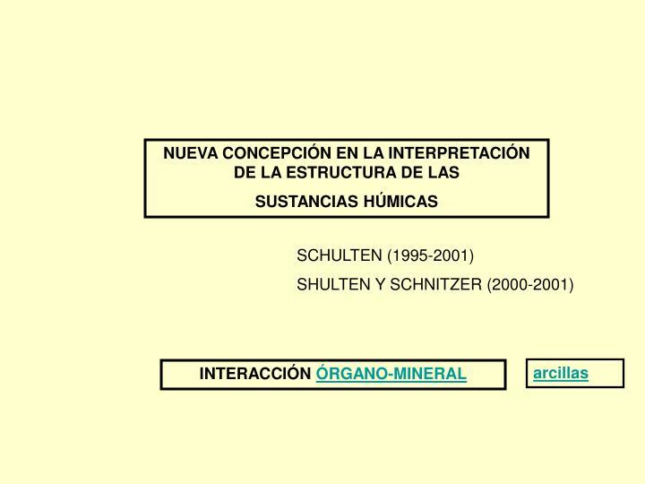 NUEVA CONCEPCIÓN EN LA INTERPRETACIÓN DE LA ESTRUCTURA DE LAS