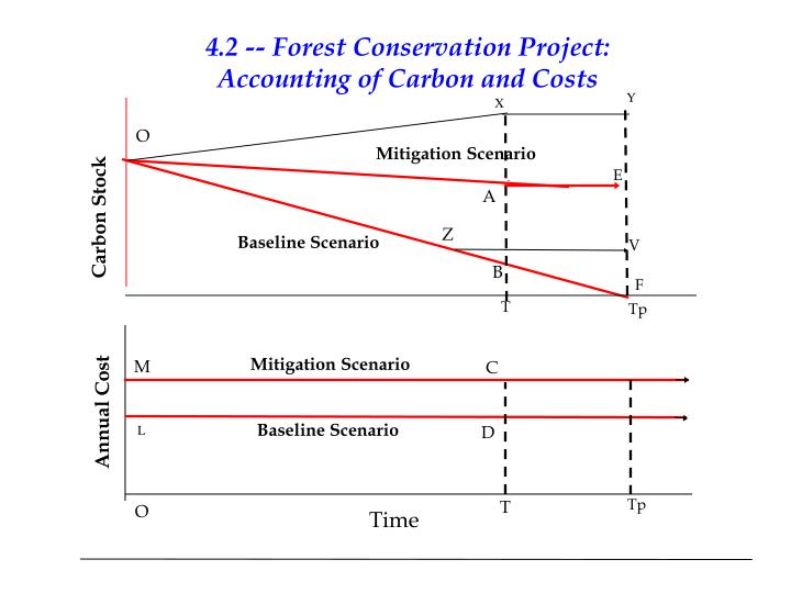 4.2 -- Forest Conservation Project: