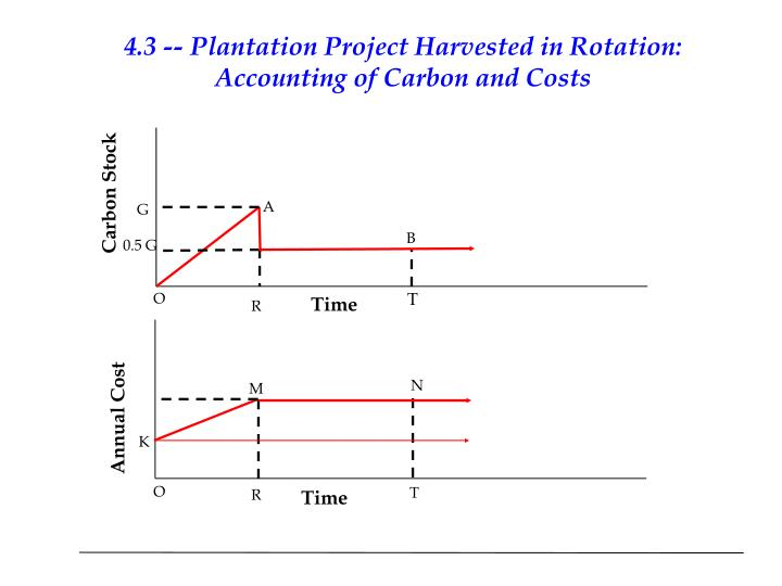 4.3 -- Plantation Project Harvested in Rotation: