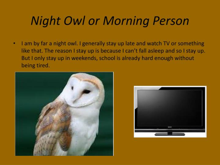 Night Owl or Morning Person