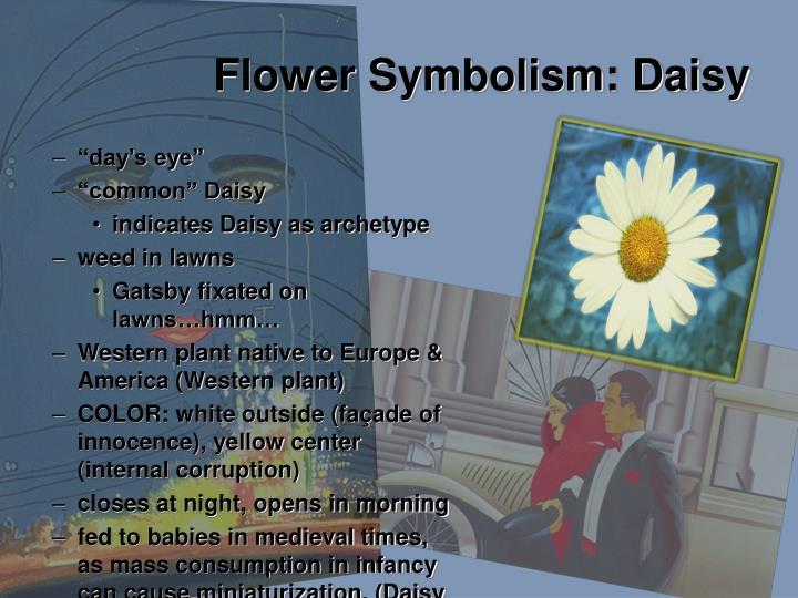 Flower Symbolism: Daisy