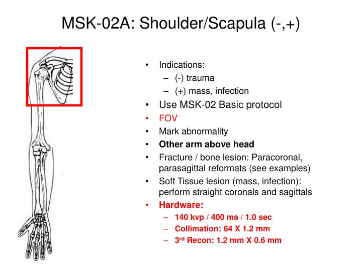 MSK-02A: Shoulder/Scapula (-,+)