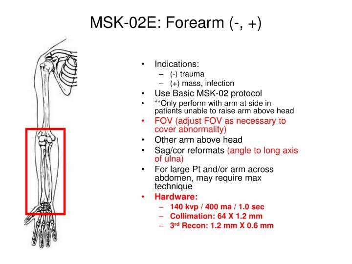 MSK-02E: Forearm (-, +)