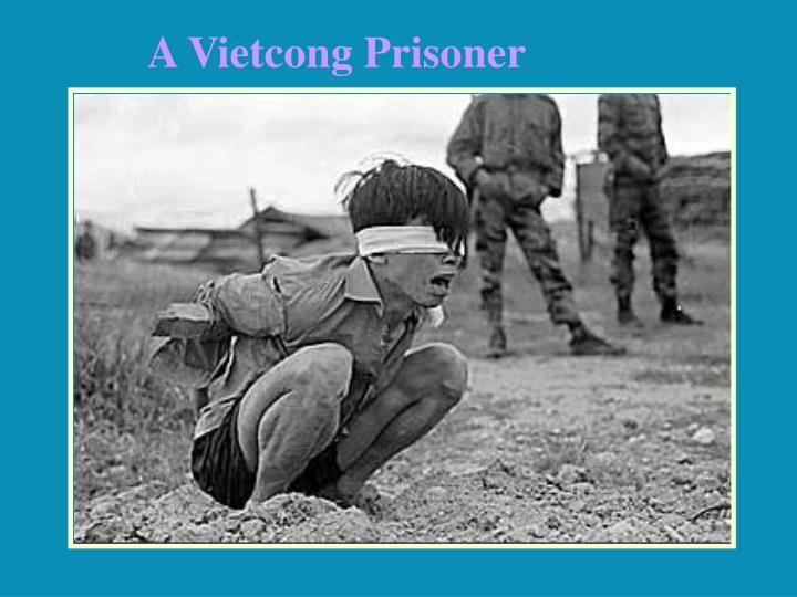 A Vietcong Prisoner
