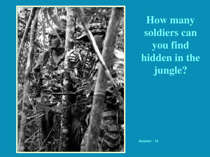 How many soldiers can you find hidden in the jungle?