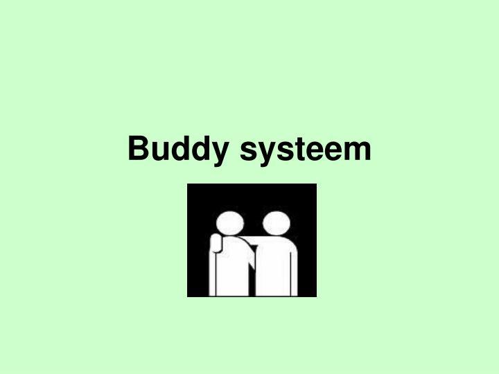 Buddy systeem