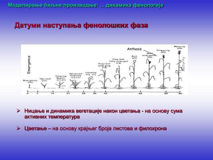 Моделирање биљне производње: ... динамика фенологије