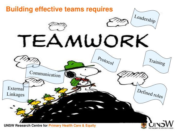 Building effective teams requires