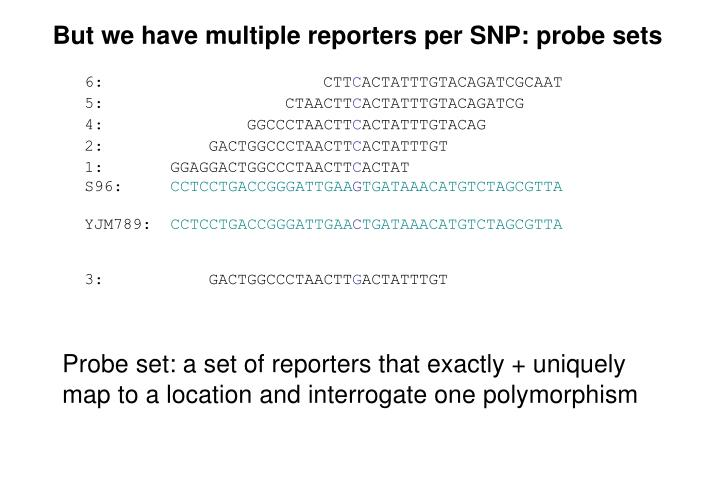 But we have multiple reporters per SNP: probe sets