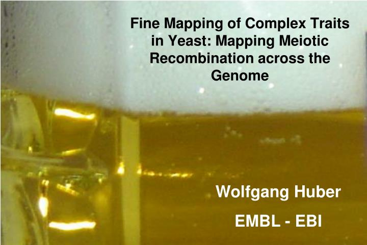 Fine mapping of complex traits in yeast mapping meiotic recombination across the genome