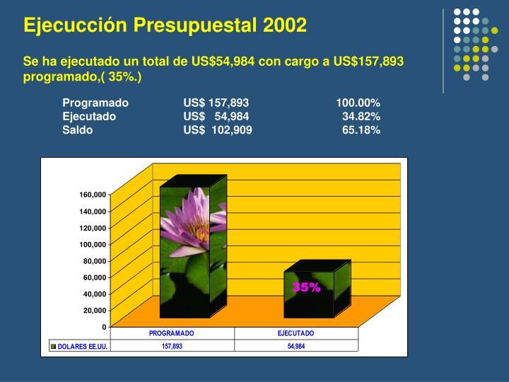 Ejecucción Presupuestal 2002