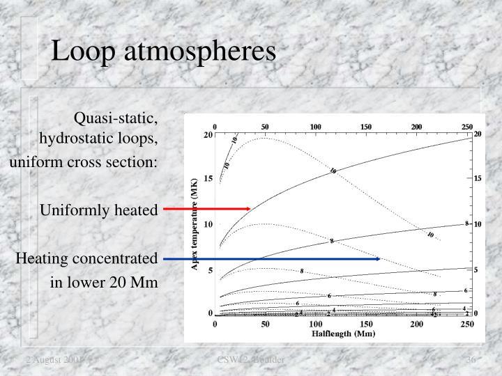 Loop atmospheres