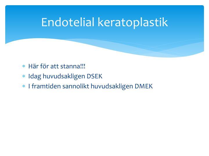 Endotelial keratoplastik