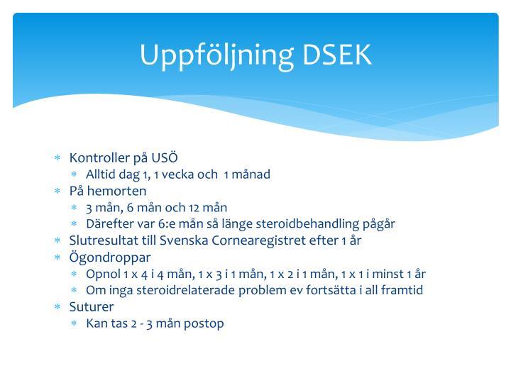 Uppföljning DSEK