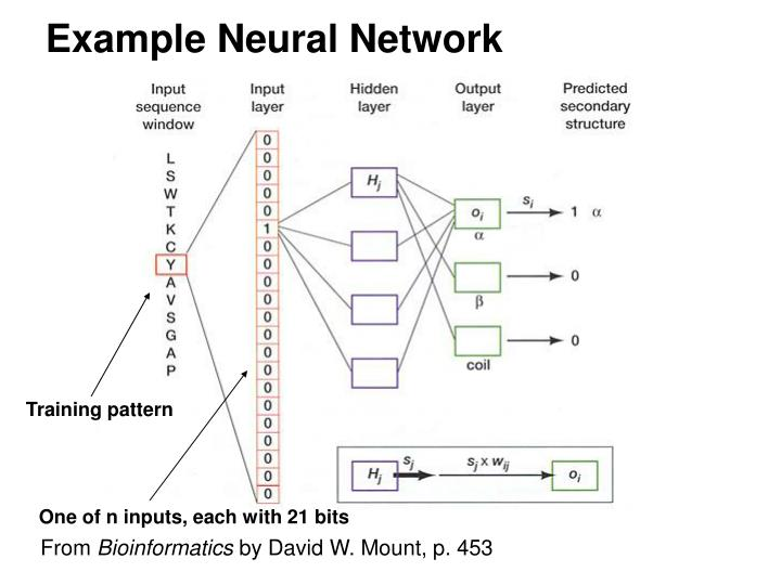 Example Neural Network