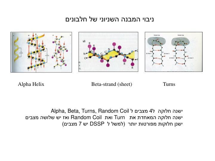 ניבוי המבנה השניוני של חלבונים