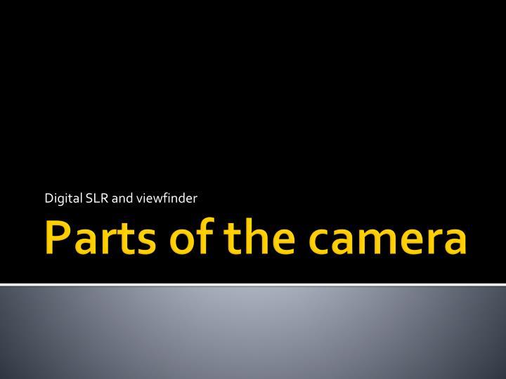 Digital SLR and viewfinder