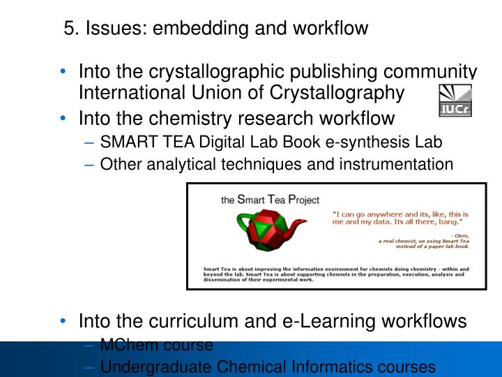 5. Issues: embedding and workflow