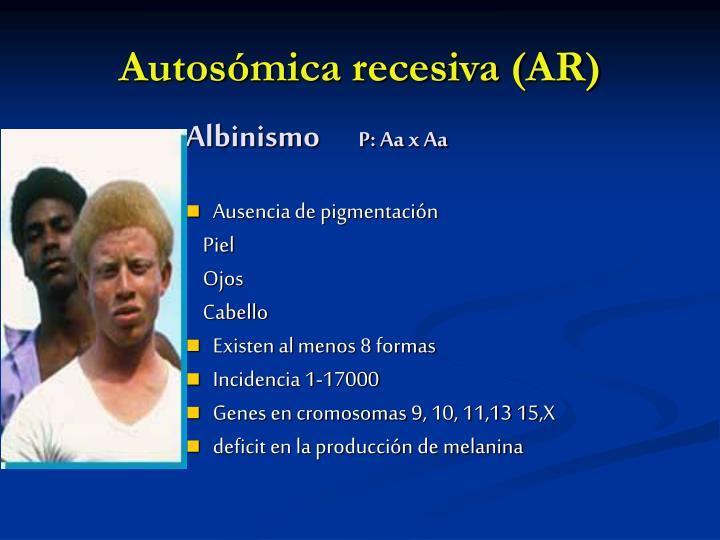 Autosómica recesiva (AR)