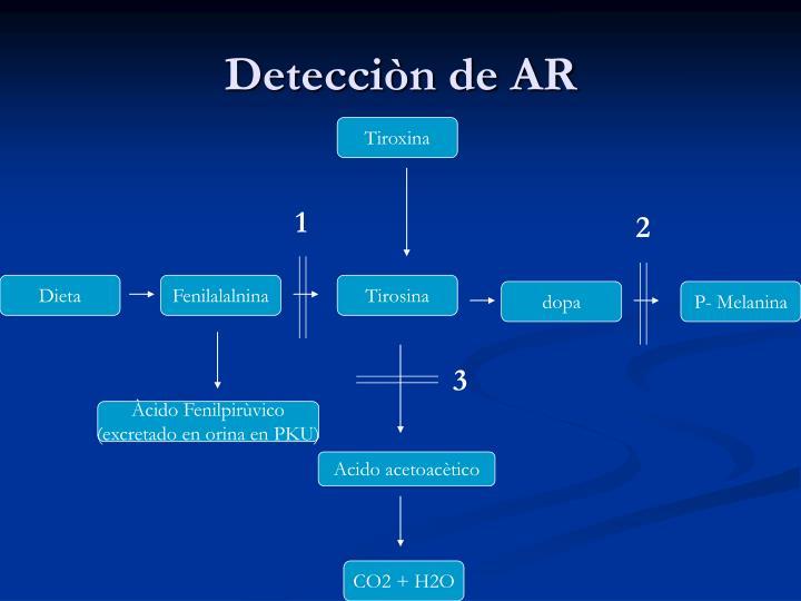 Detecciòn de AR