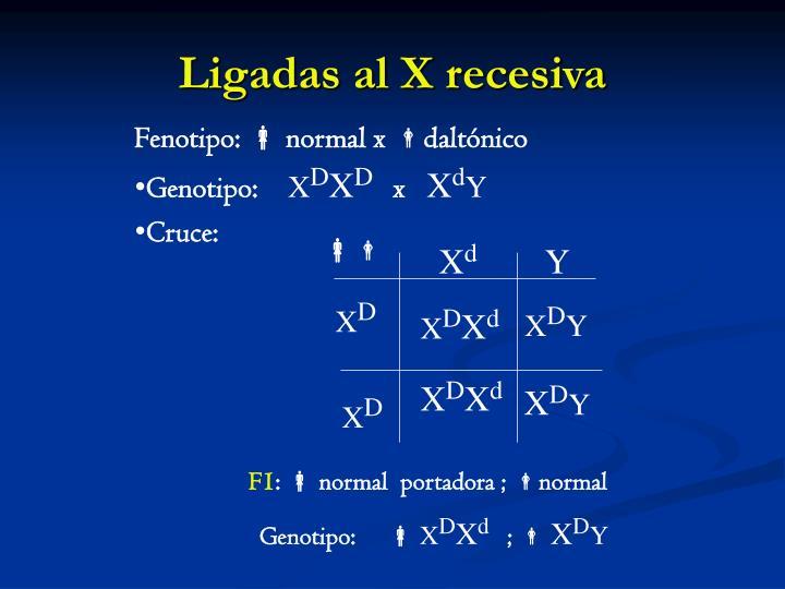 Ligadas al X recesiva