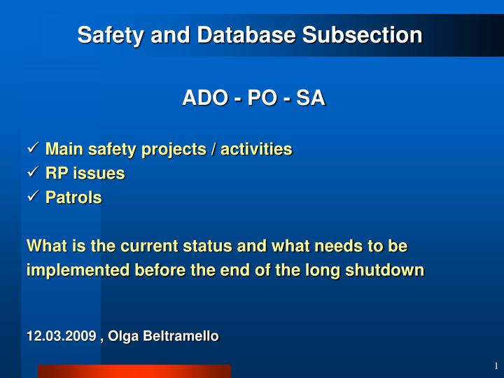 Safety and Database Subsection